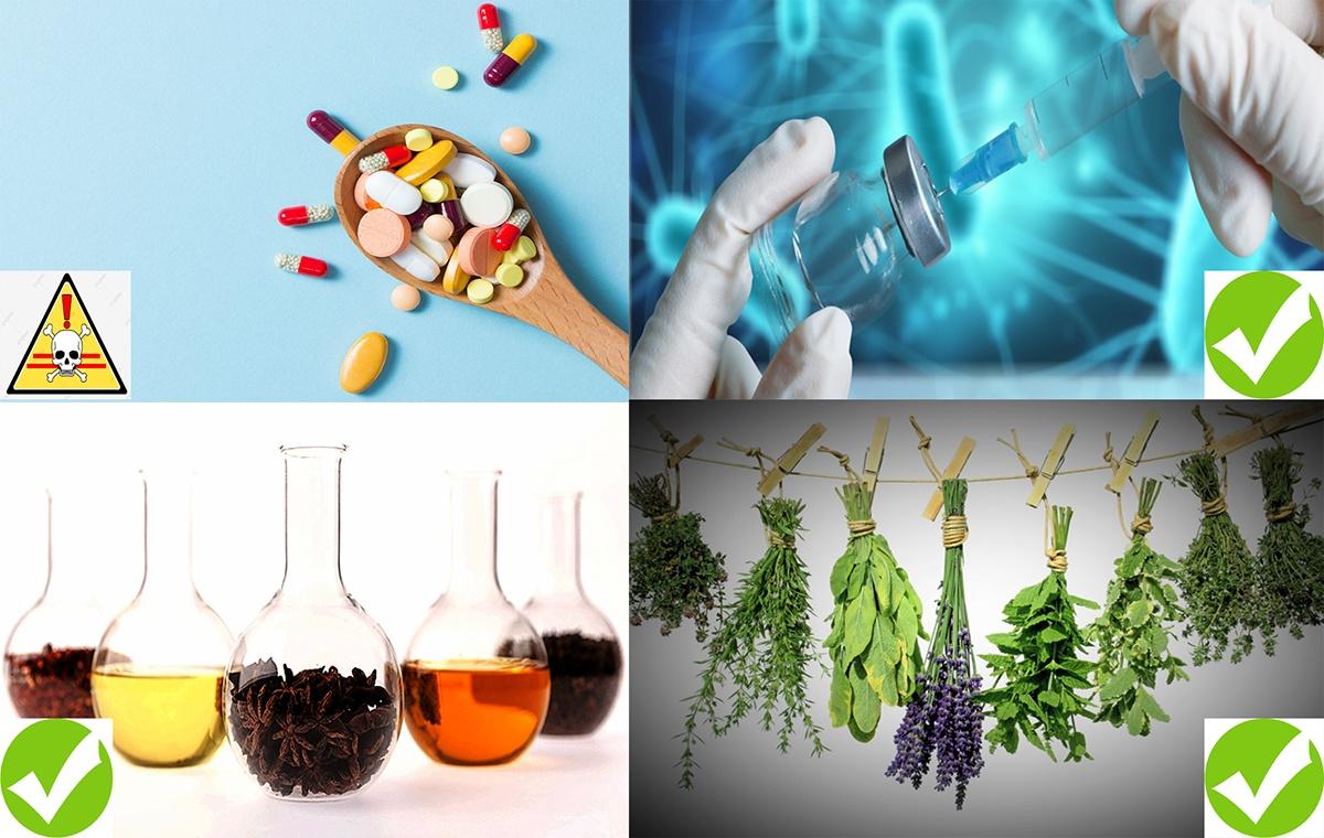 Những chất thay thế kháng sinh trong thủy sản