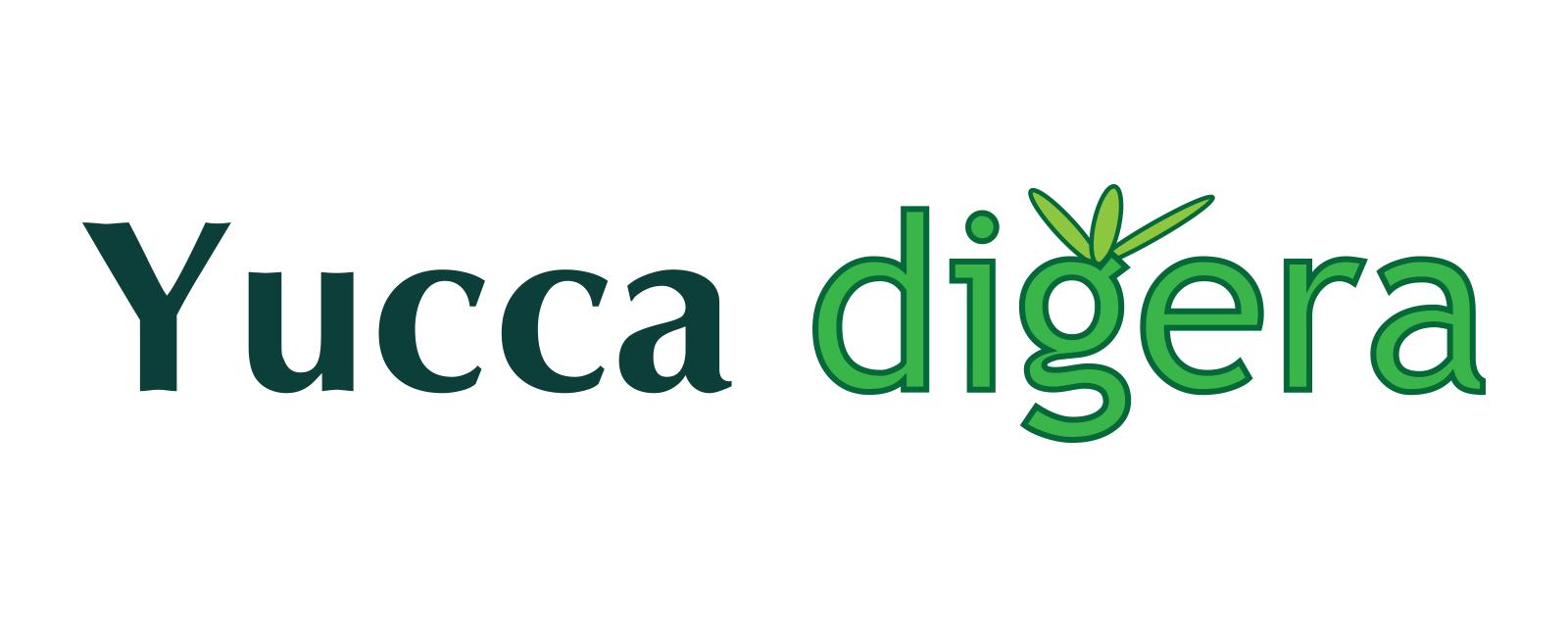 Yucca digera